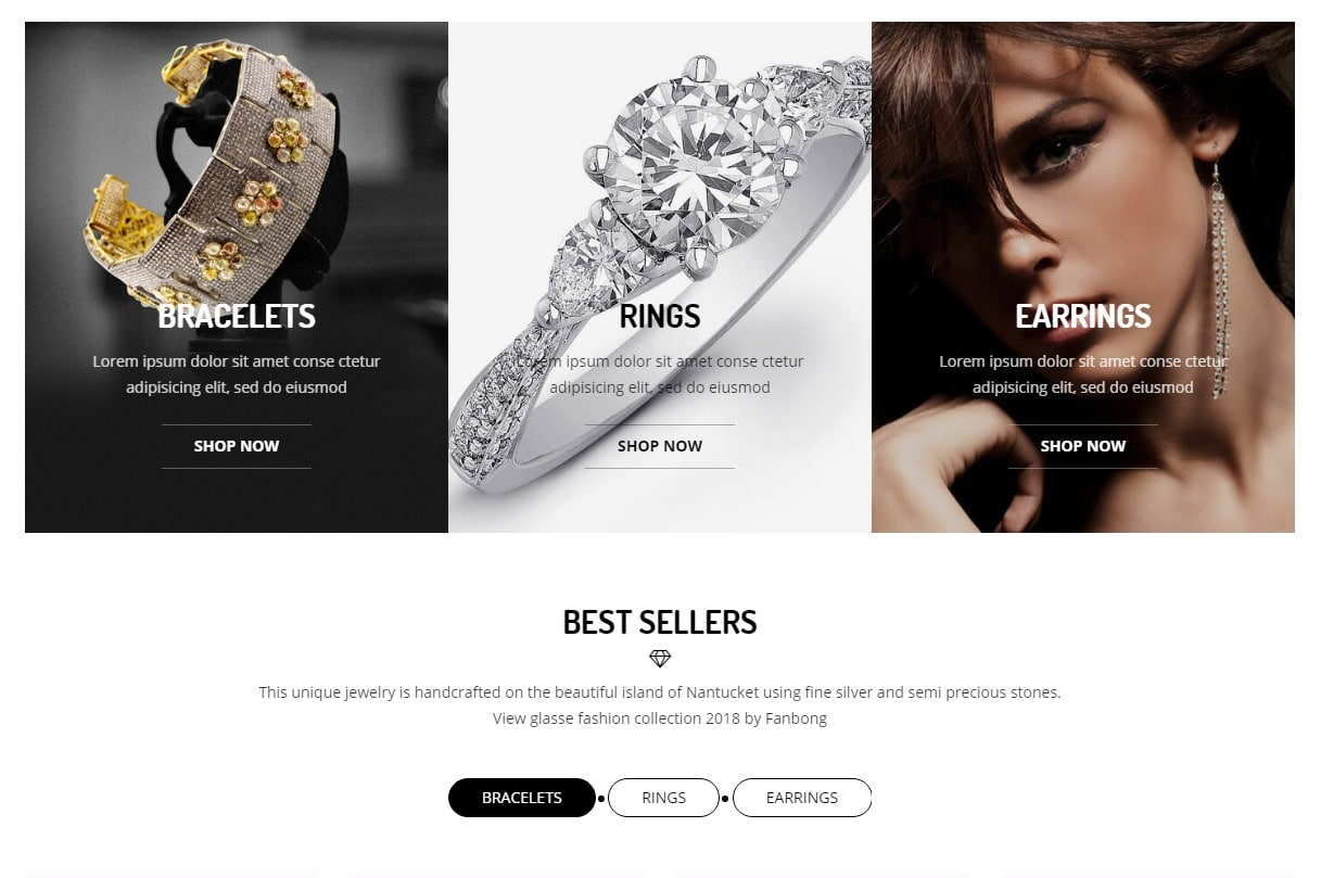 bw-store-responsive-ecommerce-website-template