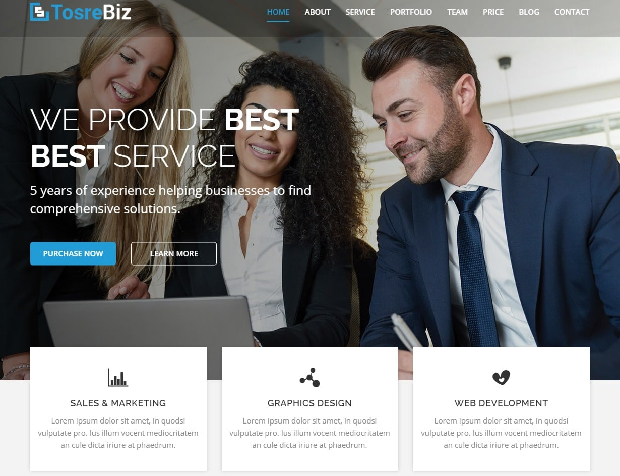 tosrebiz-responsive-html-business-website-template