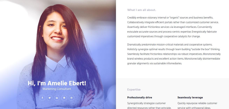 Online-CV-Free-Responsive-Website-Templates