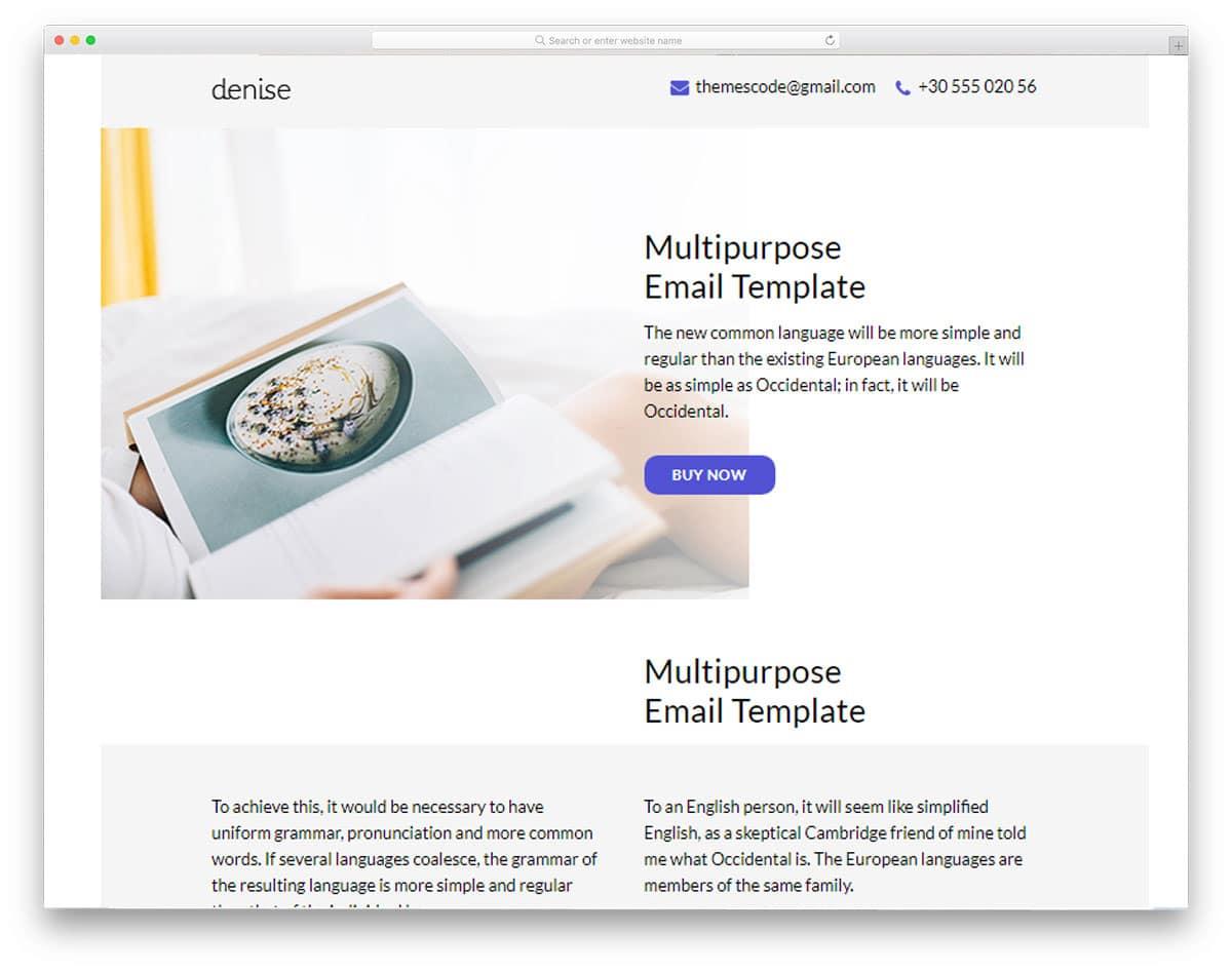 denise-mailchimp-email-templates