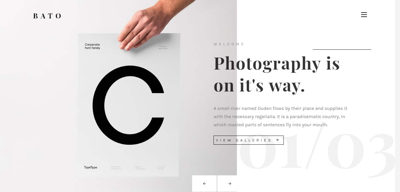 bato-gallery-website-template