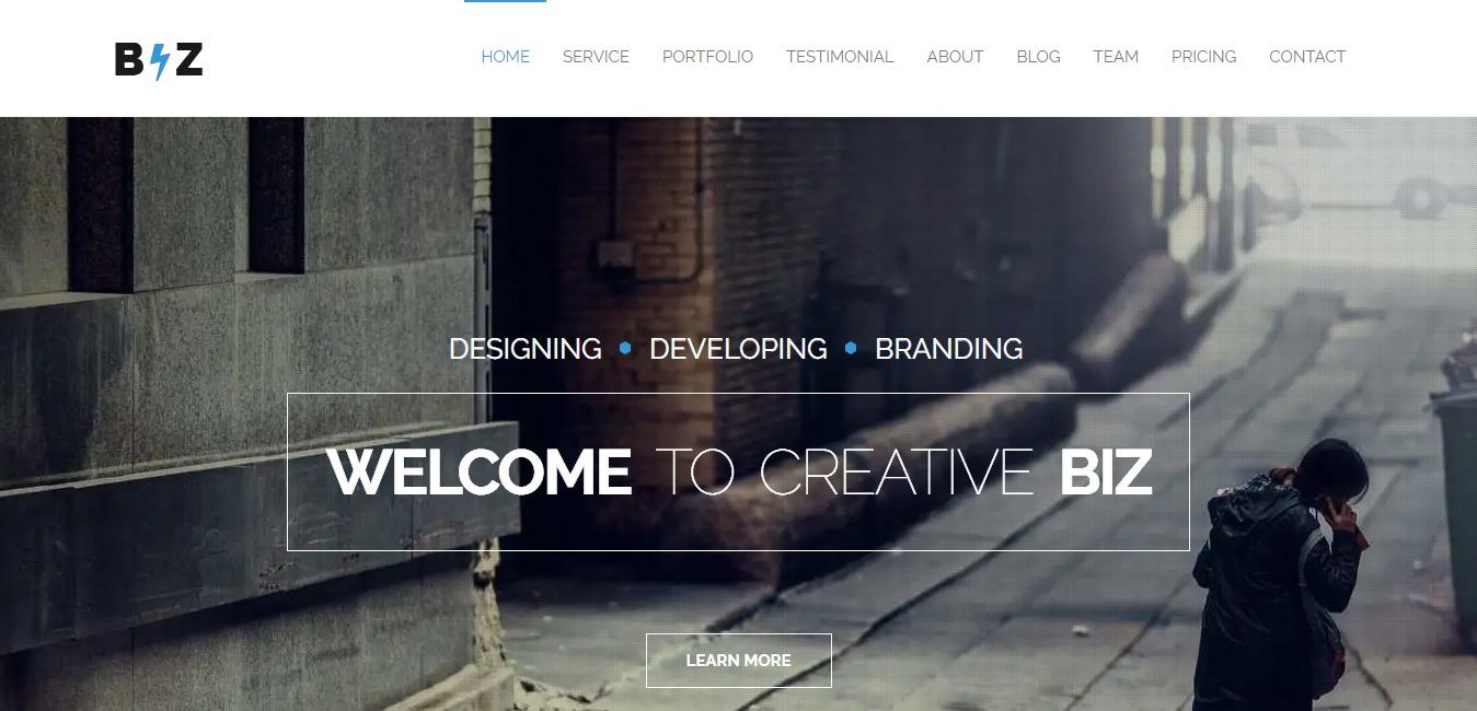 biz-one-page-parallax-website-template