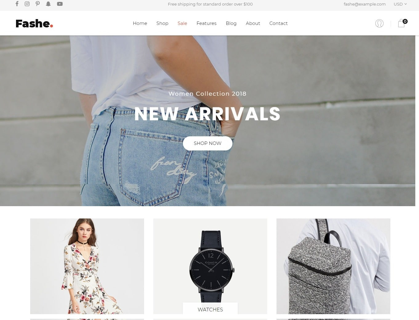 fashe-store-shop-website-template