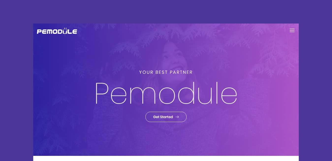 premodule-gallery-website-template