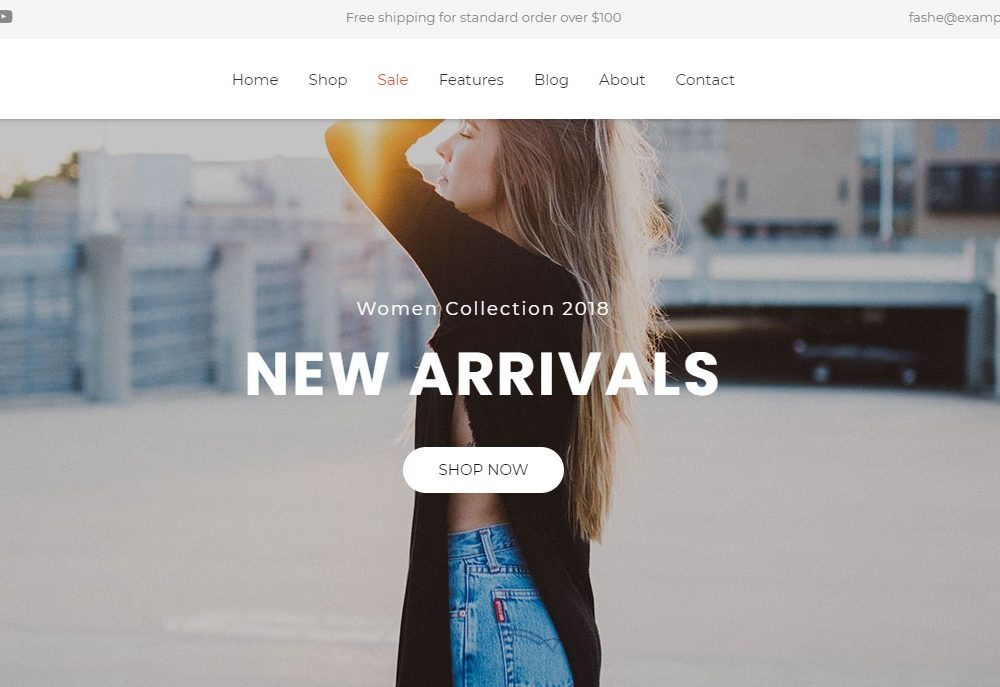 Fashe-free-ecommerce-website-template