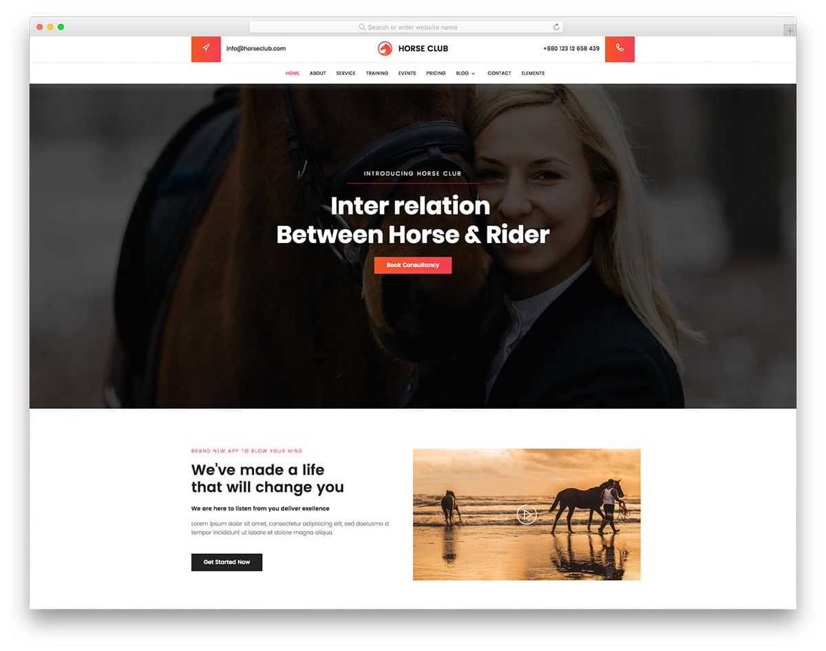 Horseclub Free Sports Website Templates Horse Club