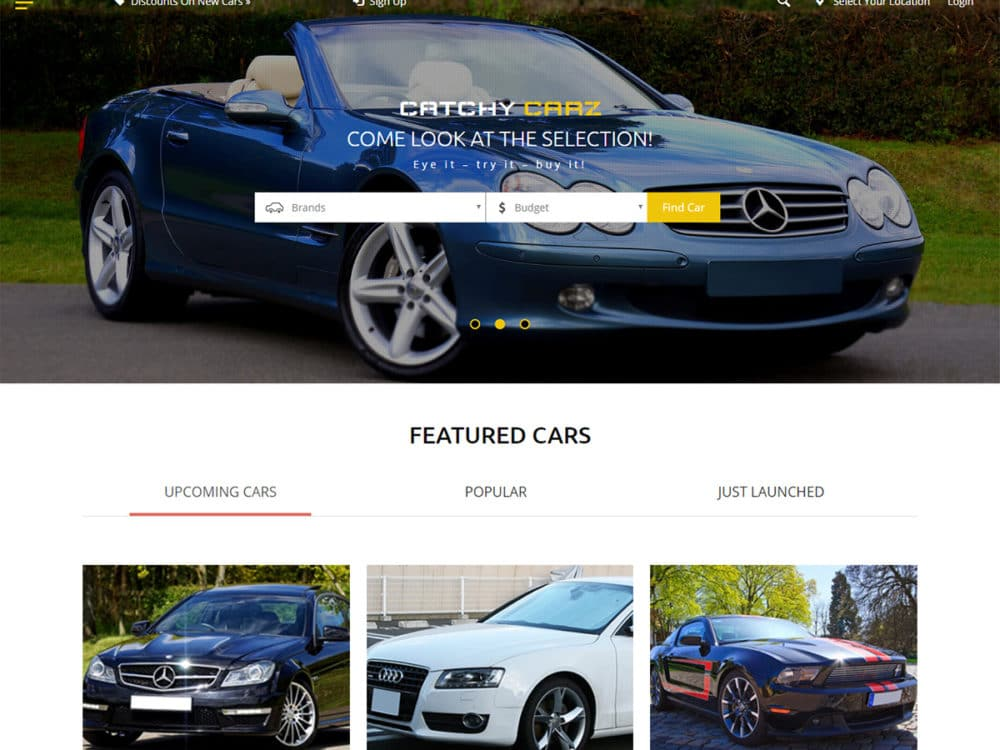 Classified_ads_templates-Catchy-carz