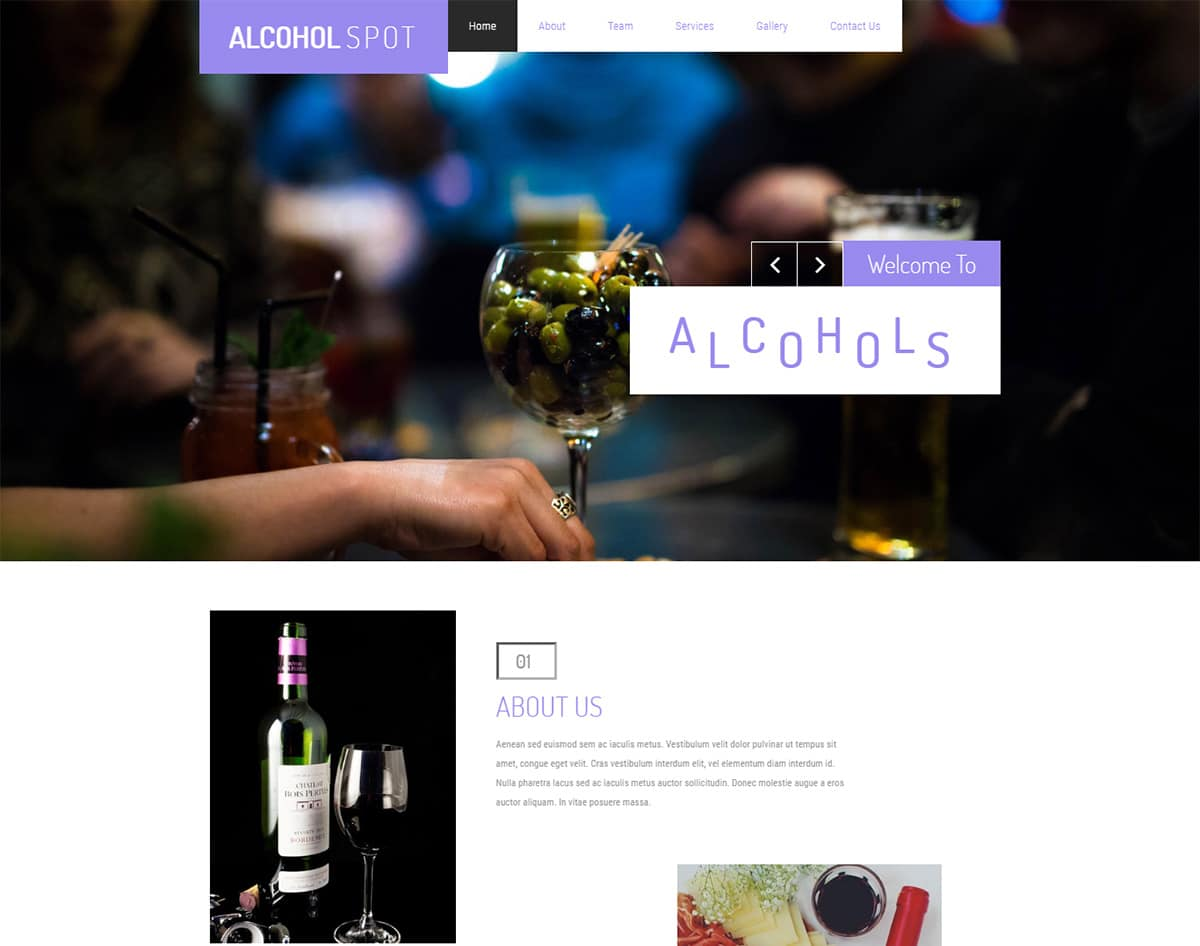Alcohol-spot bootstrap website template with video background