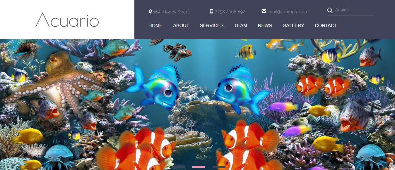 animal-and-pets-website-template-acuario