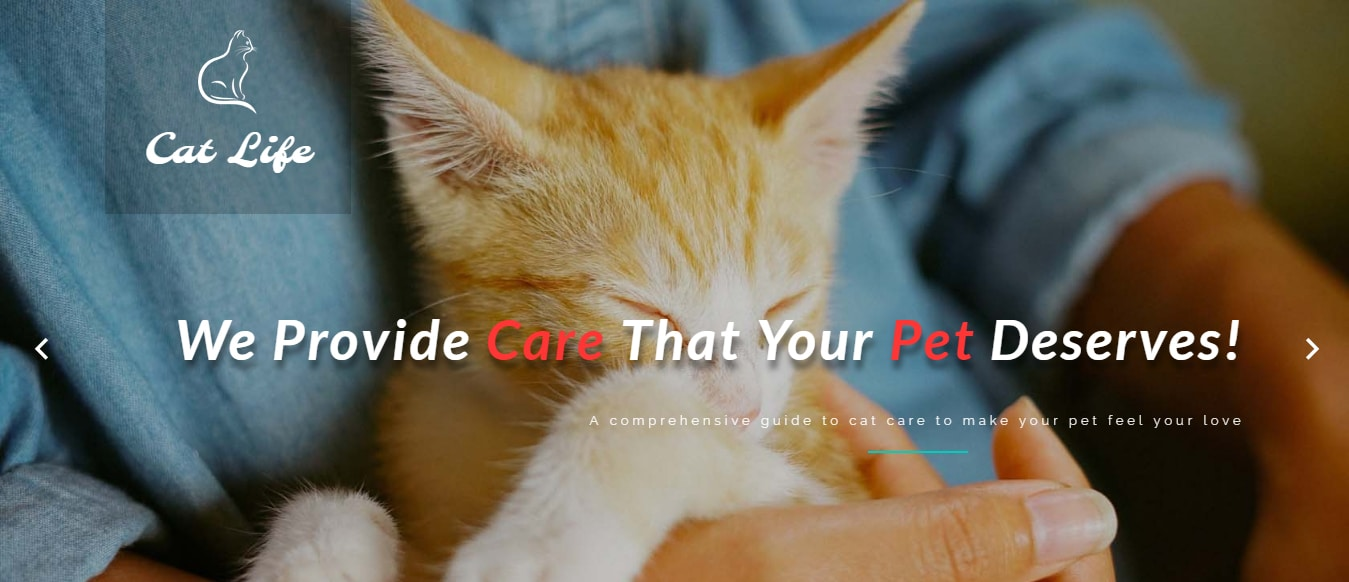 animal-and-pets-website-template-cat-life