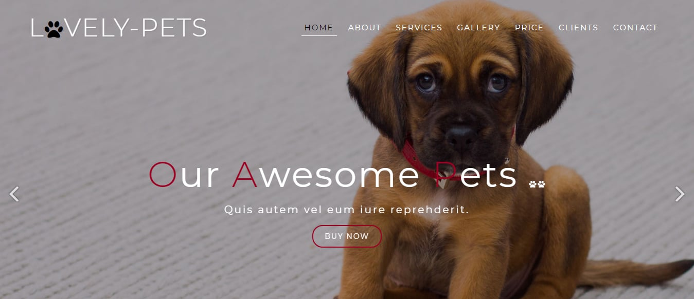 animal-and-pets-website-template-lovely-pets
