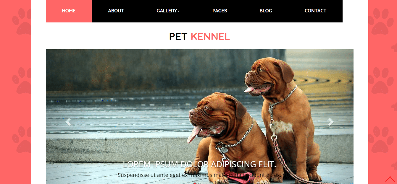 animal-and-pets-website-template-pet-kennel