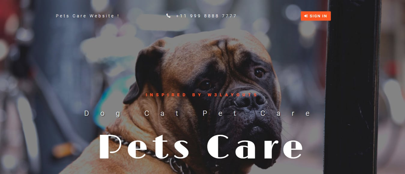 animal-and-pets-website-template-pets-care