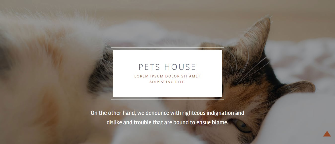 animal-and-pets-website-template-pets-house