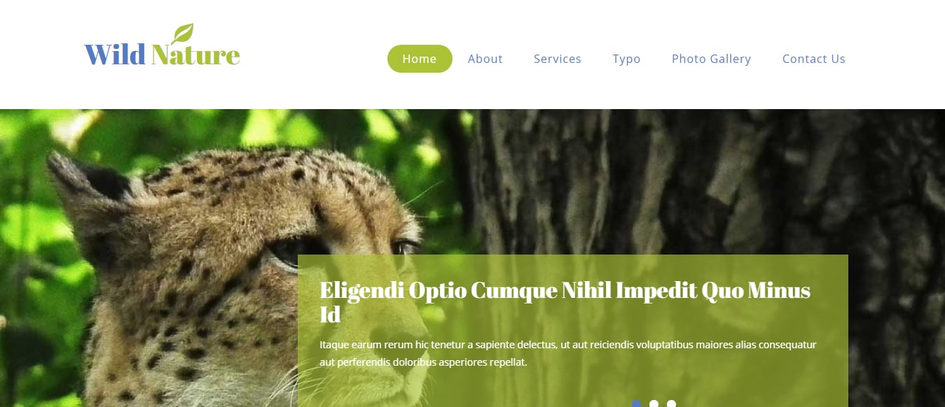 animal-and-pets-website-template-wild-nature
