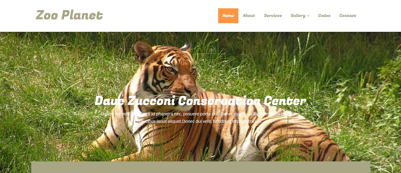 animal-and-pets-website-template-zoo-planet