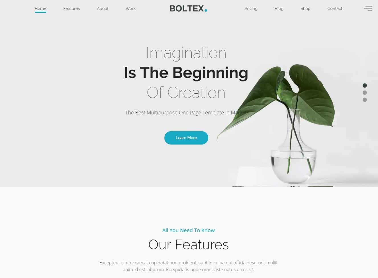 boltex simple website template
