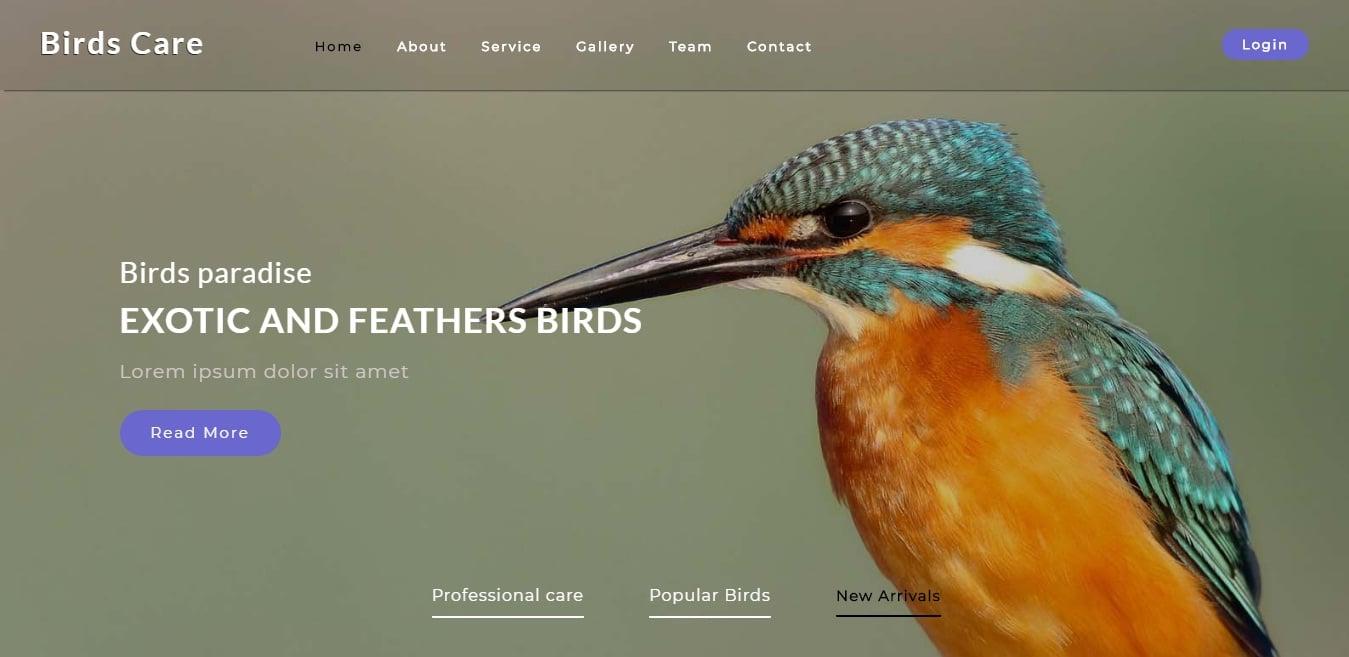 birds-care-animal-and-pet-website-template