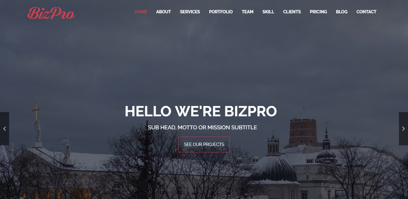 bizpro-free-one-page-website-template