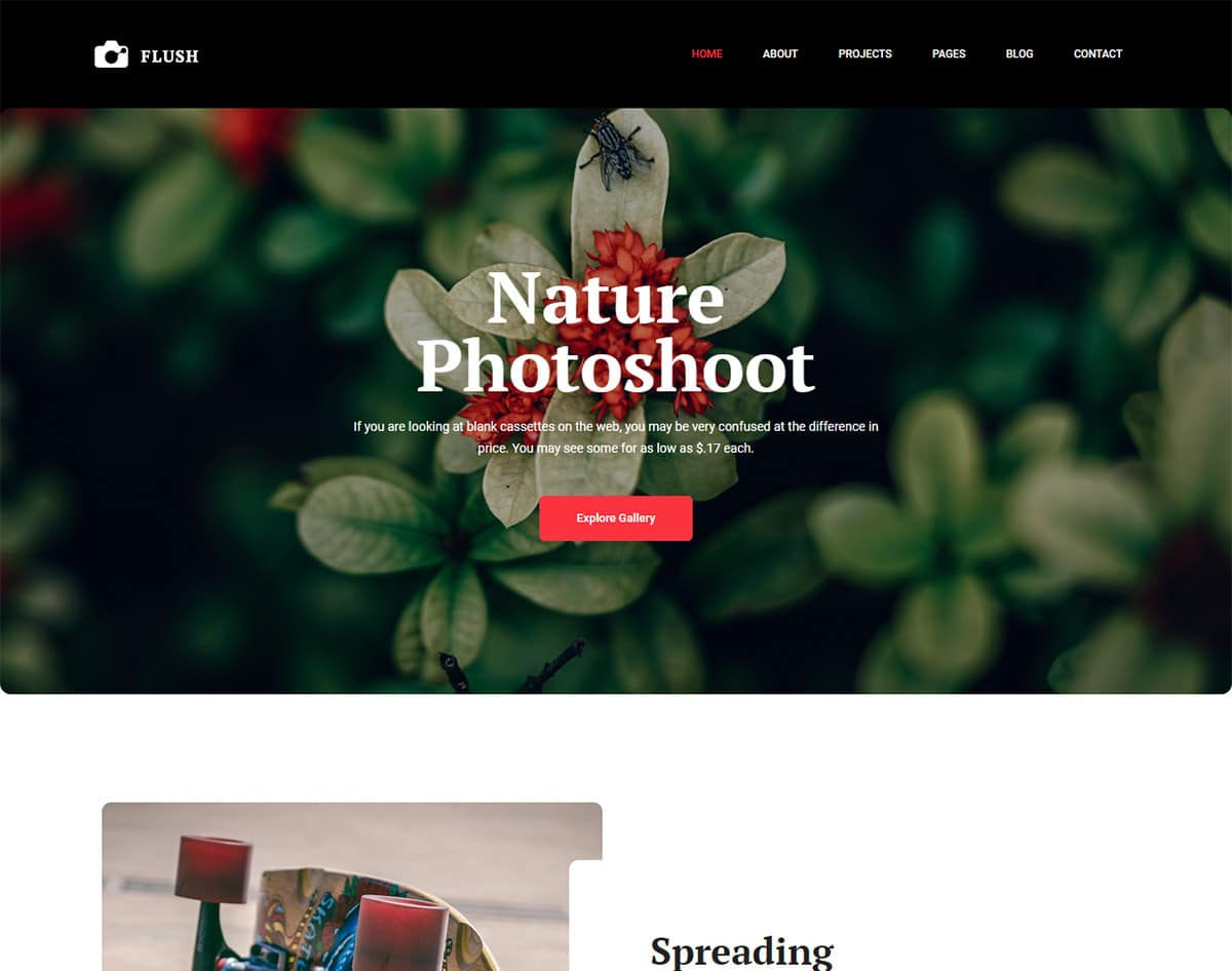 free simple website template - flash
