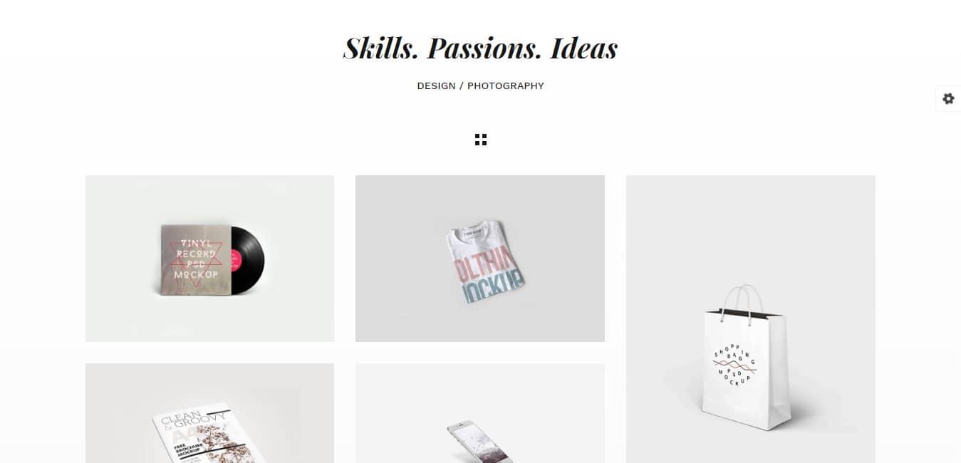 Snow Freelancer Portfolio