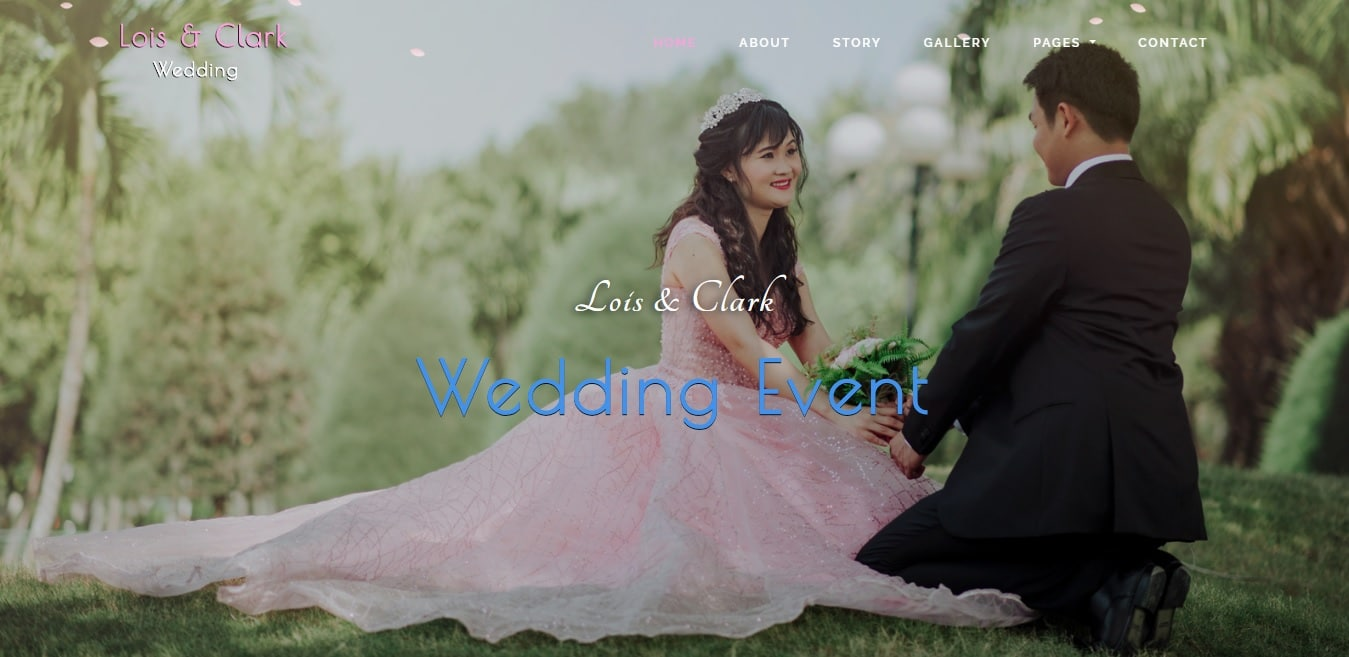 lois and clark wedding website template