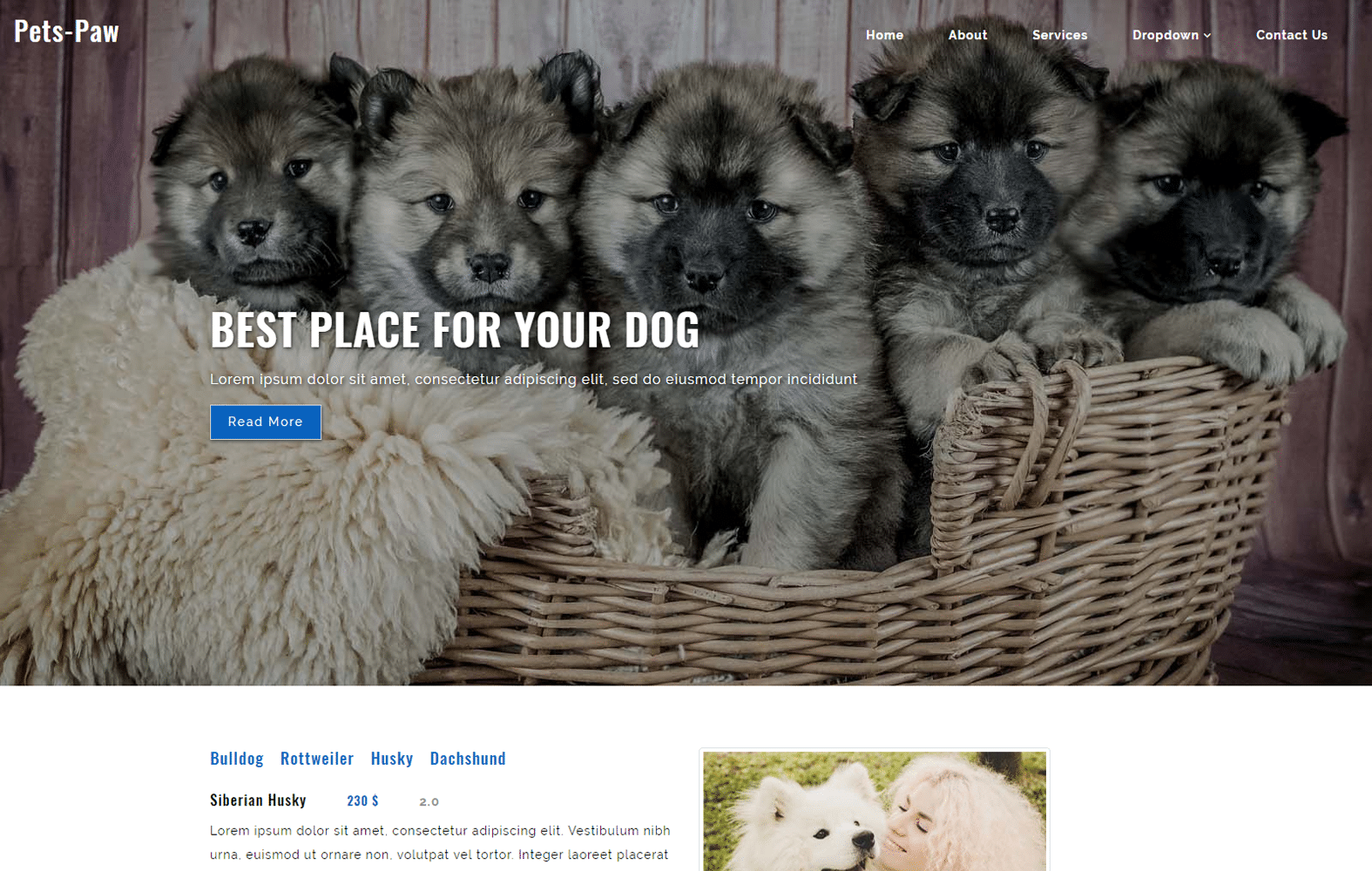 pets_paw-animal-pet-website-template