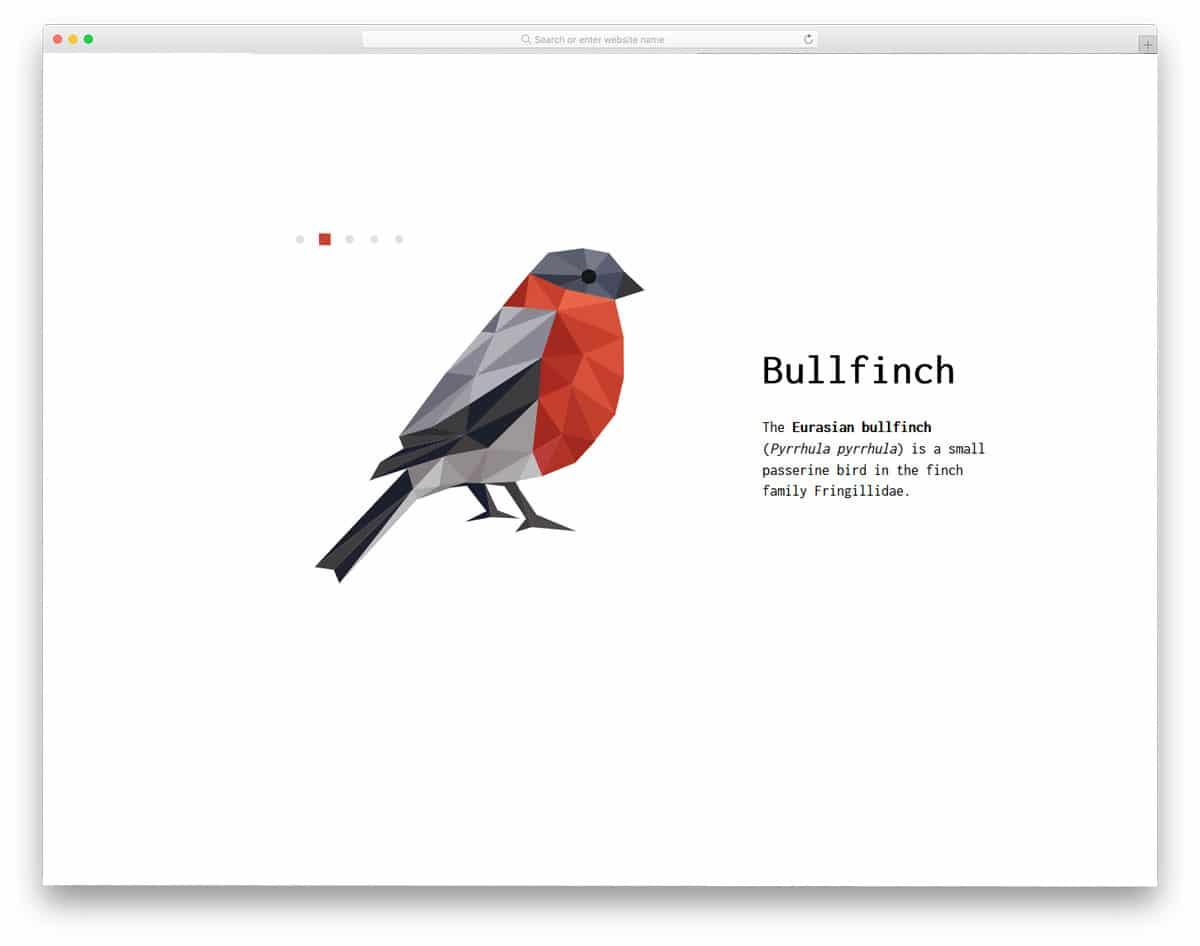 Geometrical-Birds-Slideshow