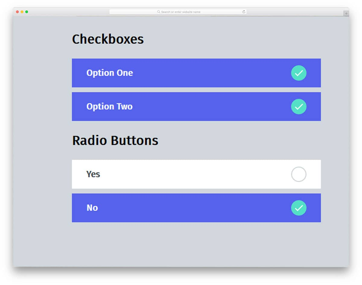 Material-Inspired-Checkboxes-And-Radio-Groups