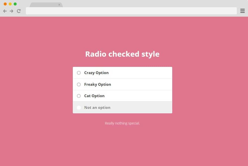Radio checked style