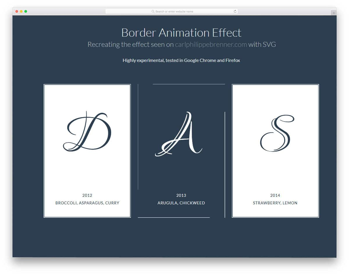 Border-Animation-Effect-With-SVG-And-CSS