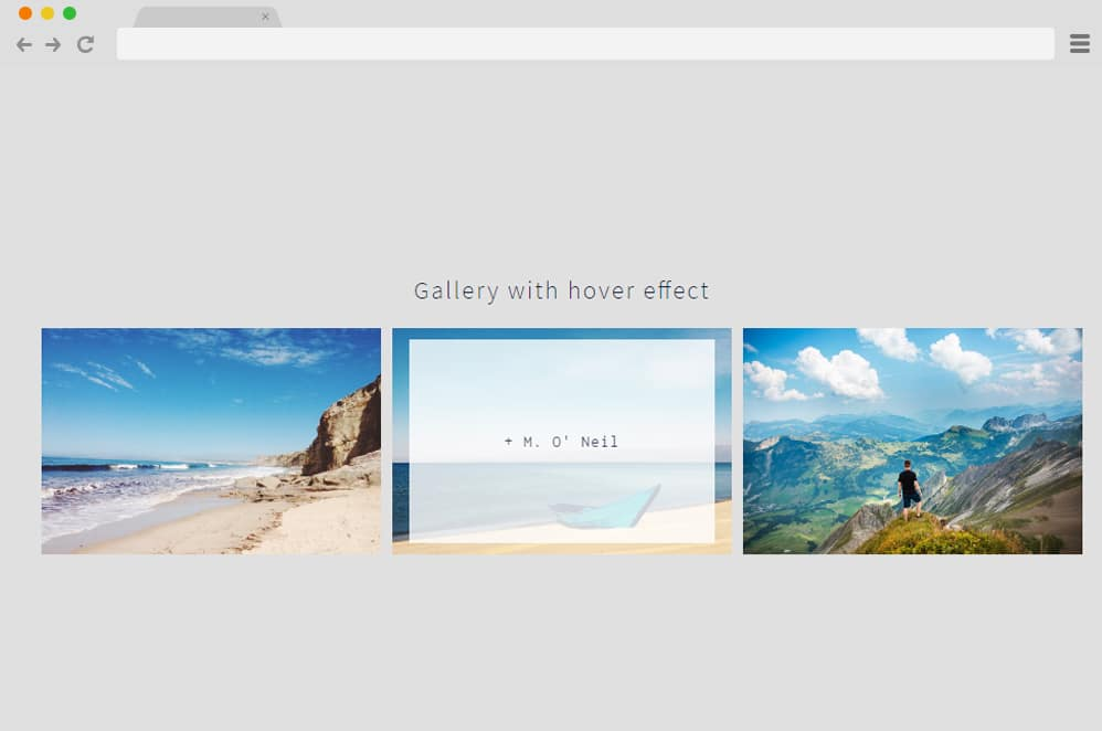 CSS Gallery Hover Effect css image gallery