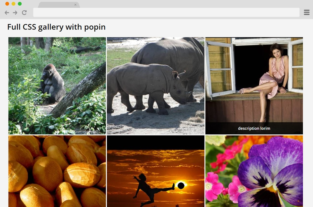 CSS Photo Gallery With Popin css image gallery