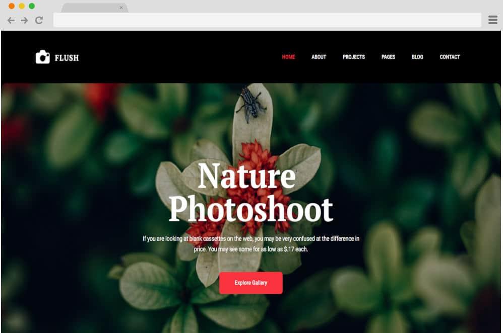 HTML image gallery - flash