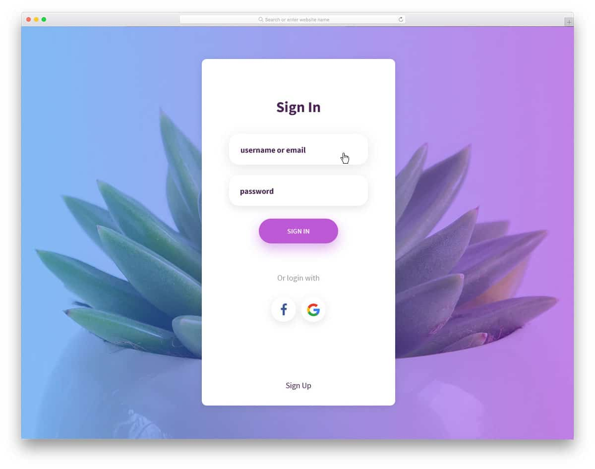 login-form-9-beautiful-css-forms