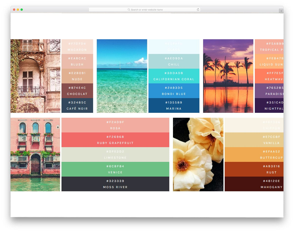 Color-Palettes-With-Flexbox