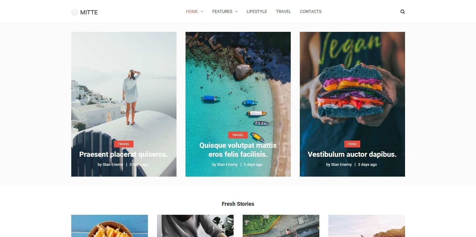 mitte-blog-website-template