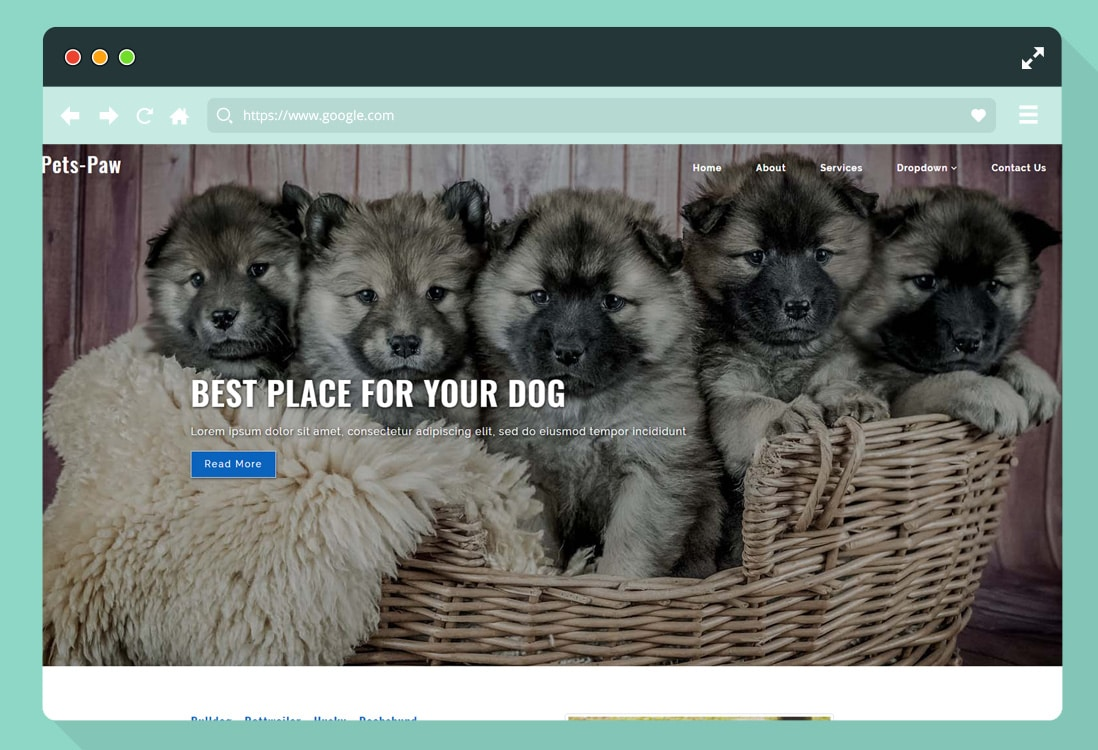 free-animal-pet-website-template