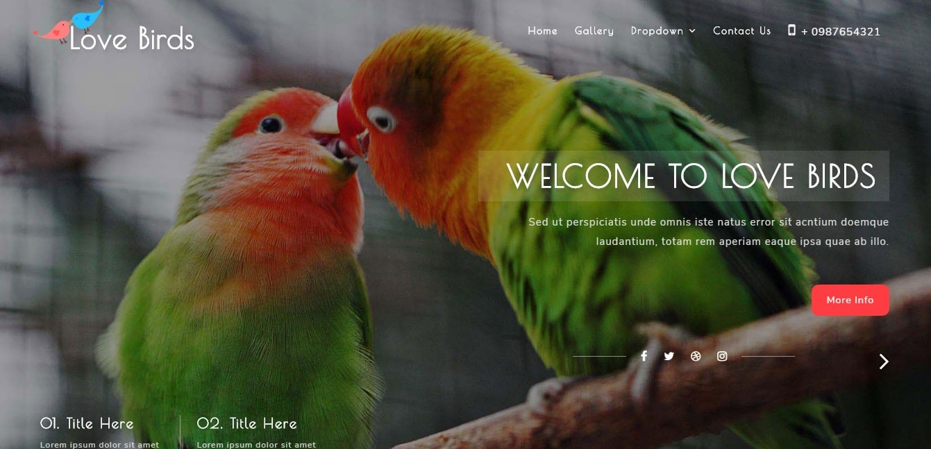 love birds animal and pets website template