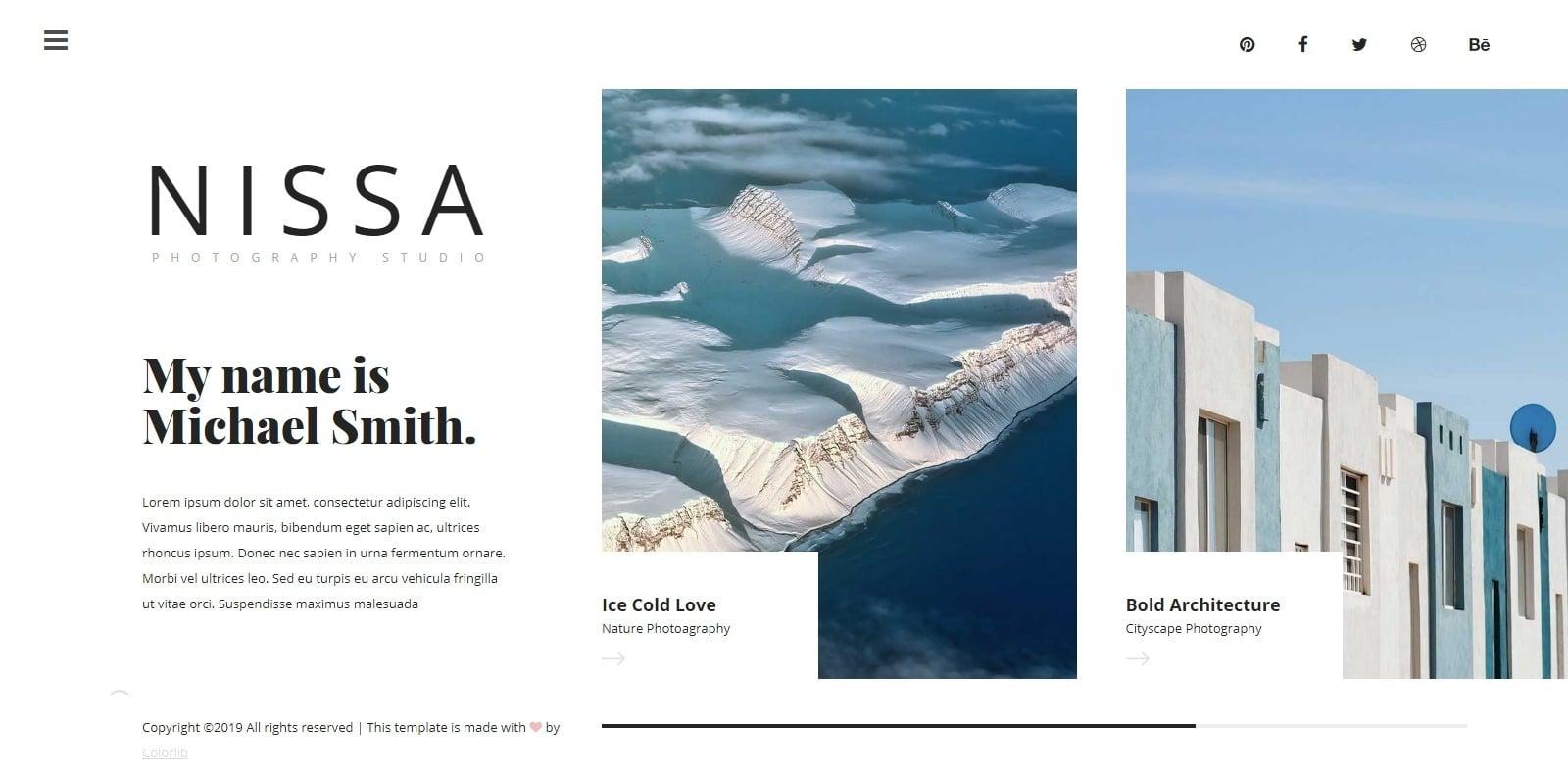 nissa-gallery-website-template