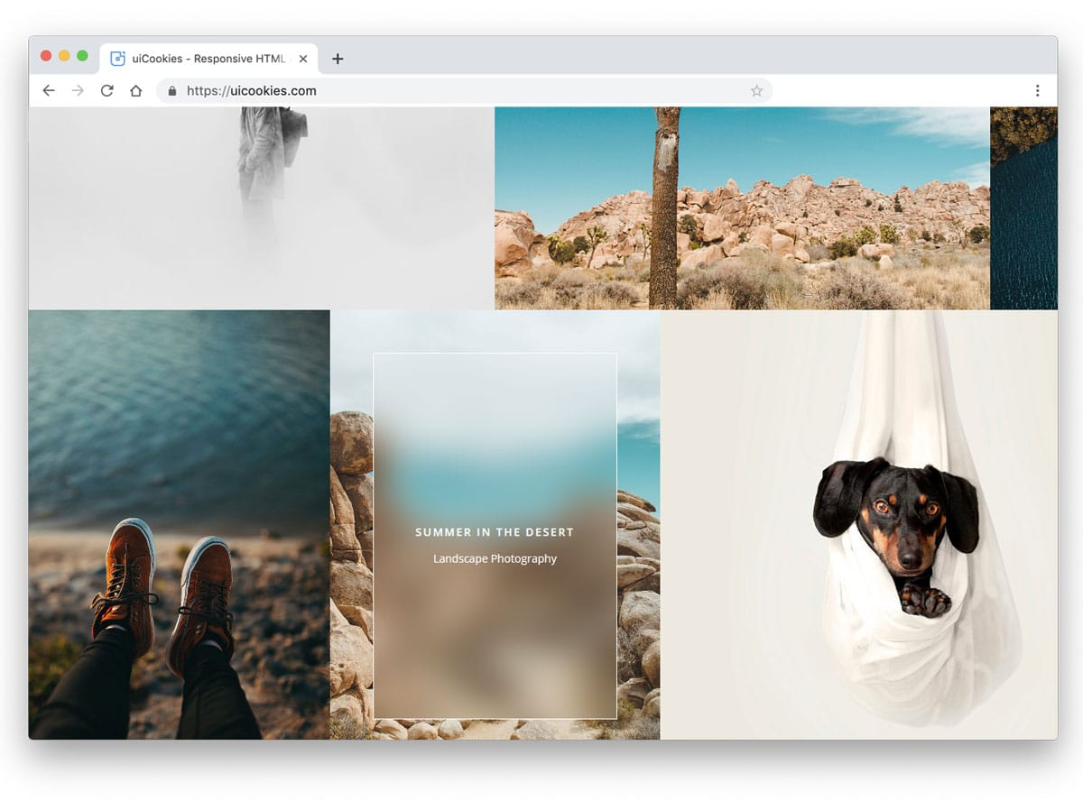 Filter Gallery Codepen