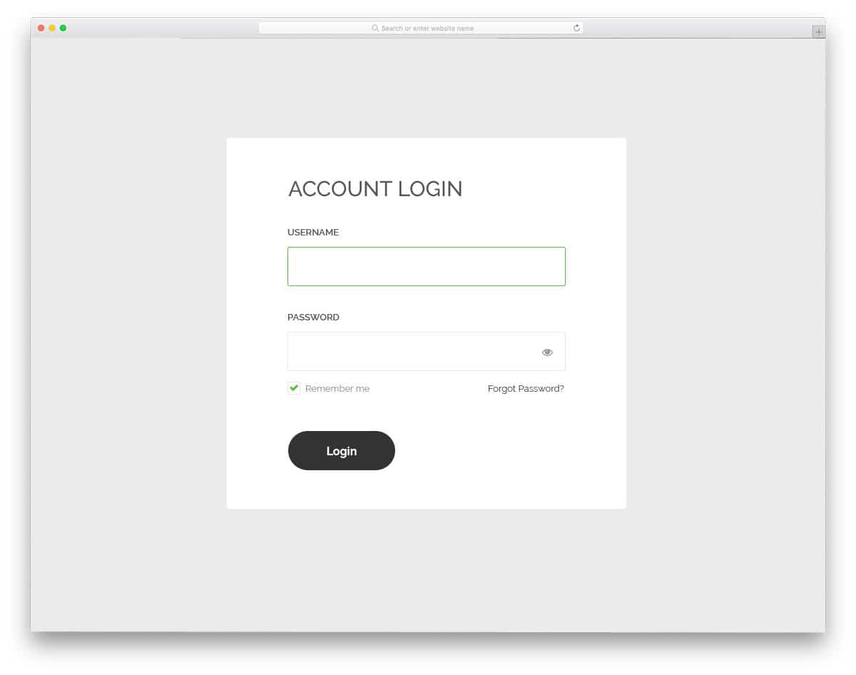 login form with show and hide password