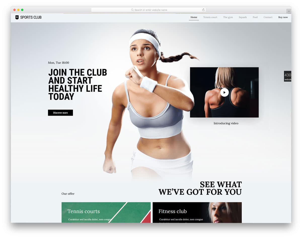 wordpress theme package with theme design for all niches