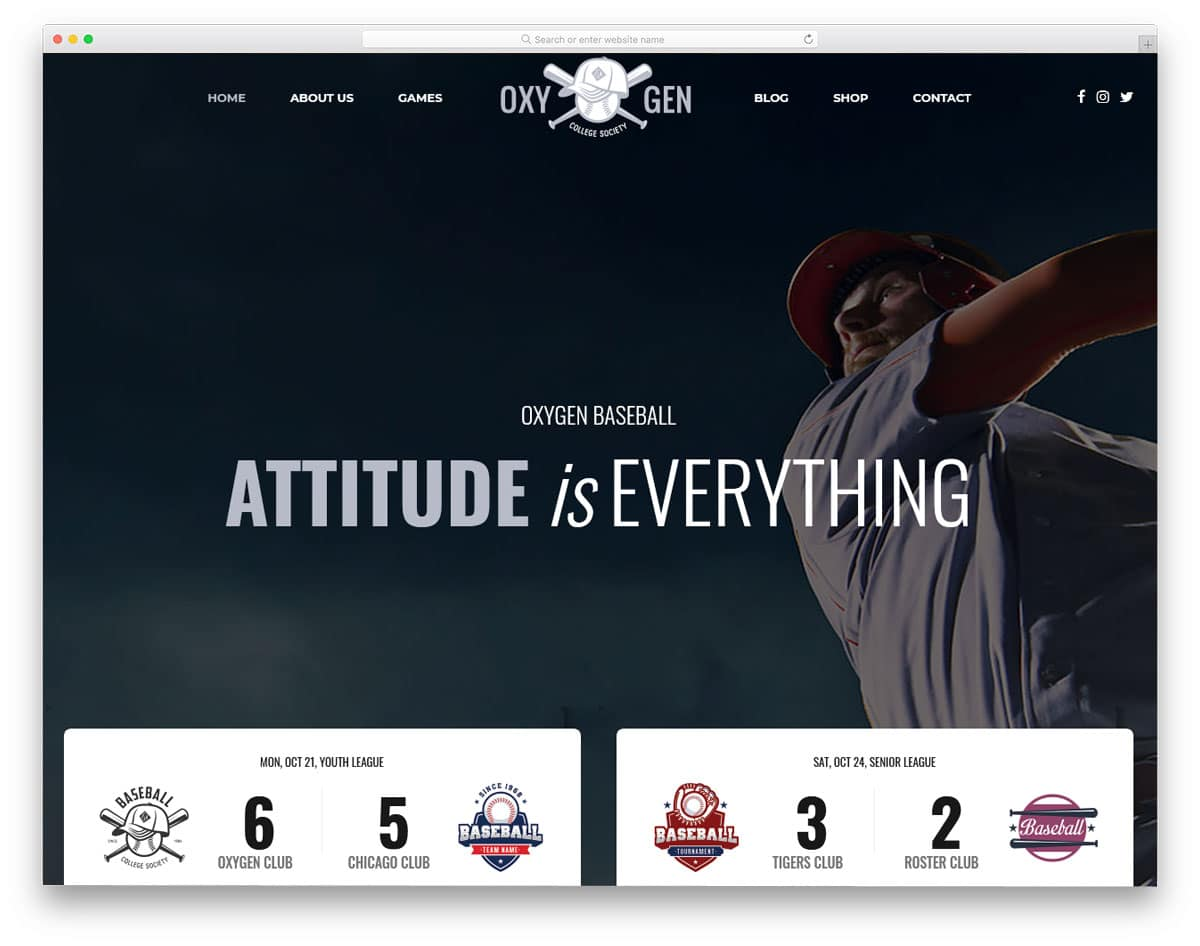 classy looking baseball wordpress themes