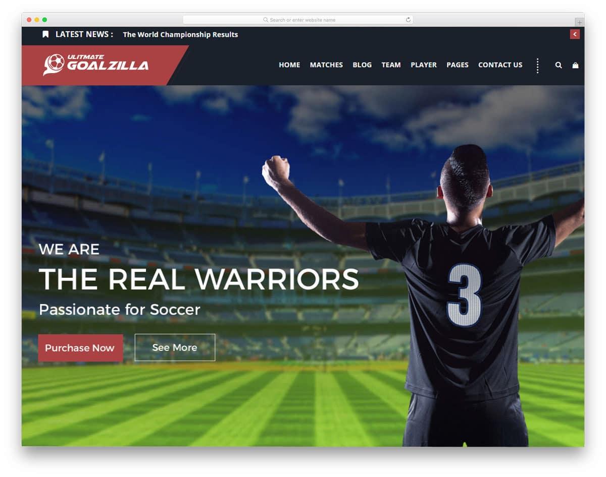 easy to setup sports wordpress theme