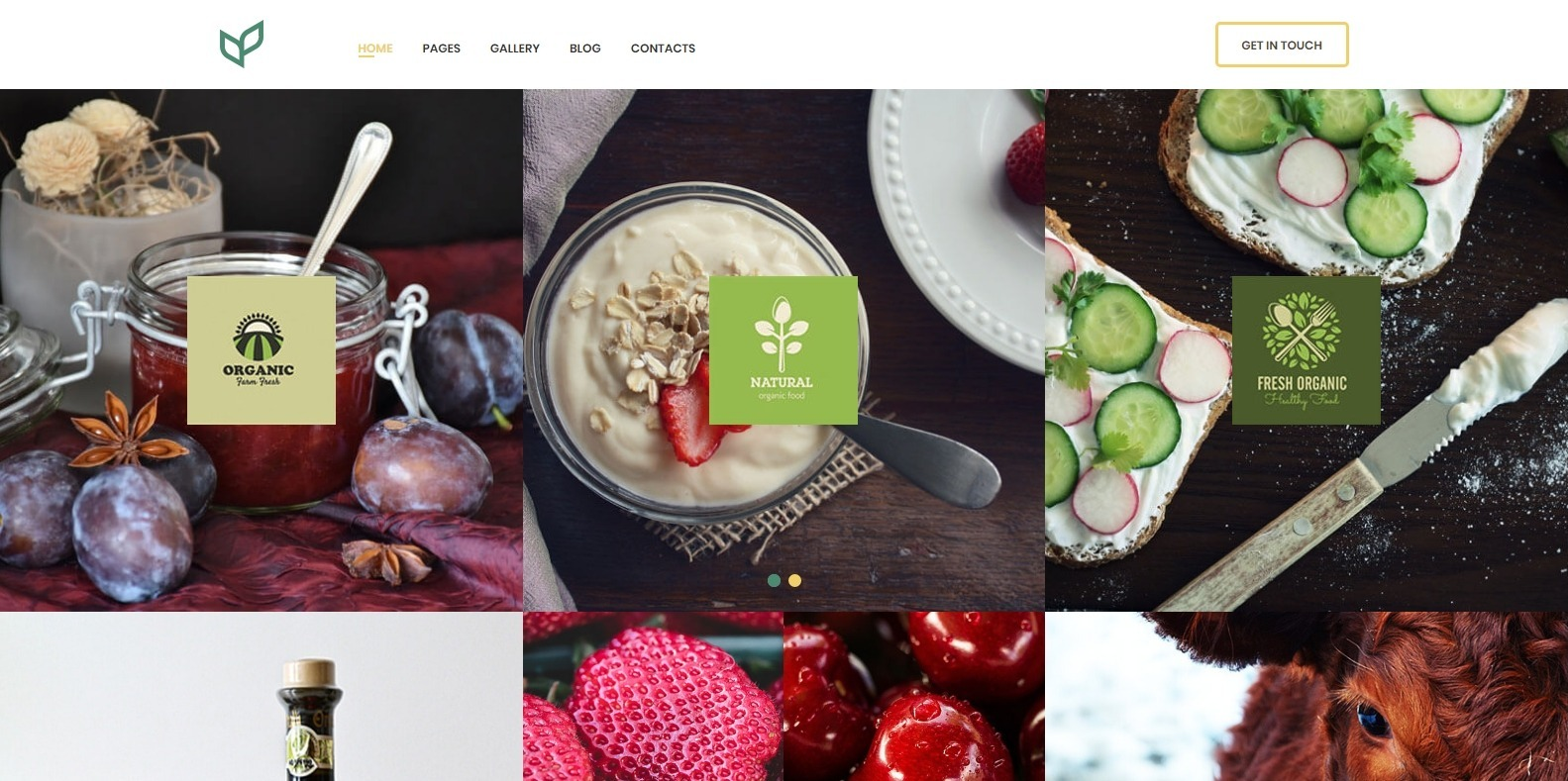 agricom-food-blog-website-template