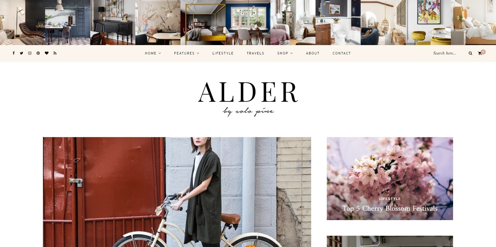 alder-food-blog-website-template
