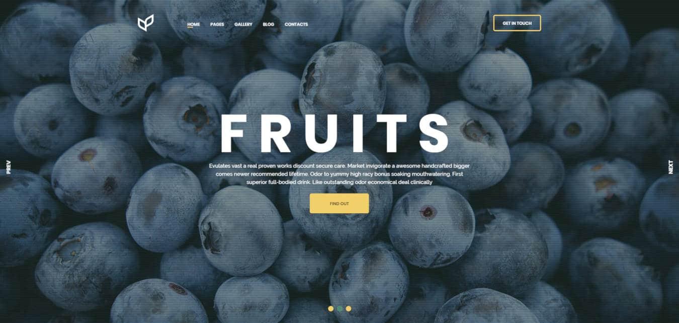 food website templates agricom
