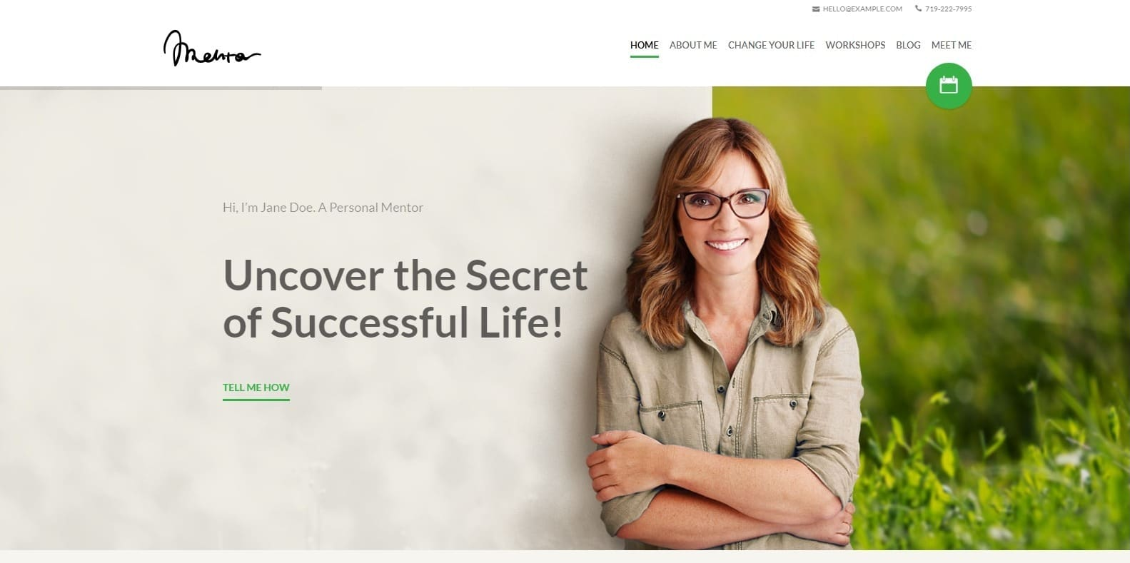 mentor-coaching-website template