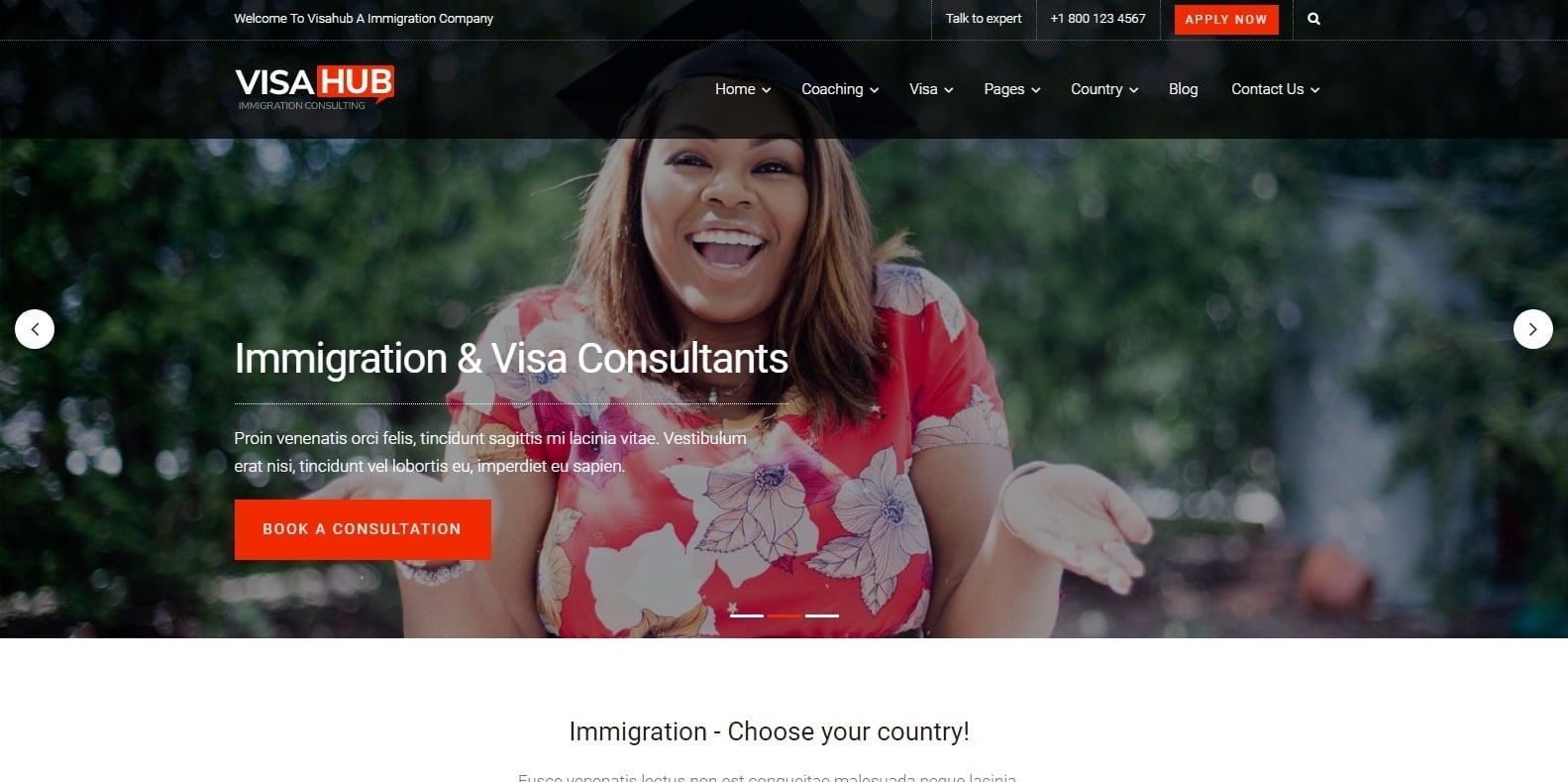 visa-hub-consulting-website-template